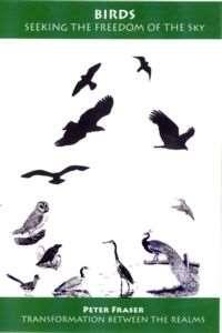 birdslm